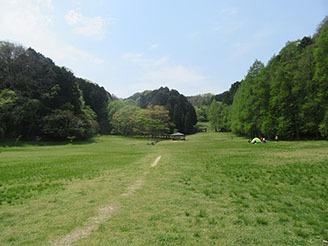 矢田自然の森01
