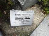 名鉄三好ヶ丘駅 形の分子(内在するものたち) 説明