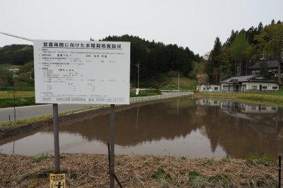 2017.5.9 葛尾村 ぽこ&まちさん 2
