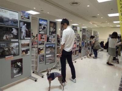 2017.5.28 ハウスクエア横浜イベント 1