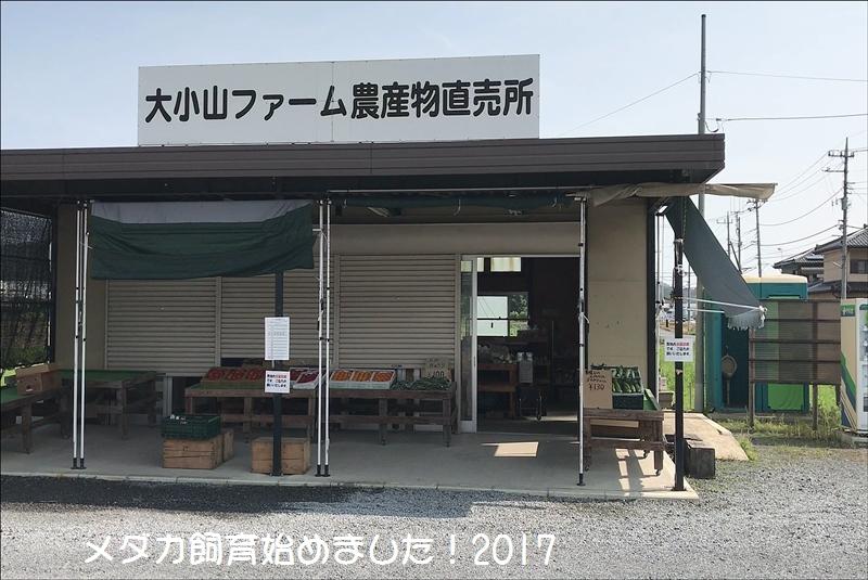 MOV_000001933.jpg