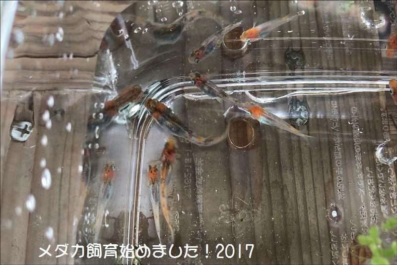 MOV_000021972.jpg
