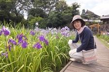 花菖蒲園1