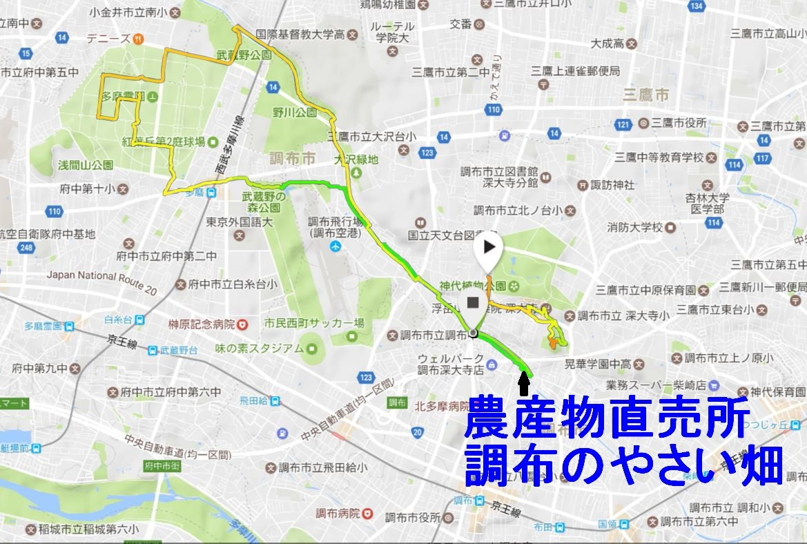 20170603_2.jpg