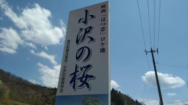 小沢カンバン0503