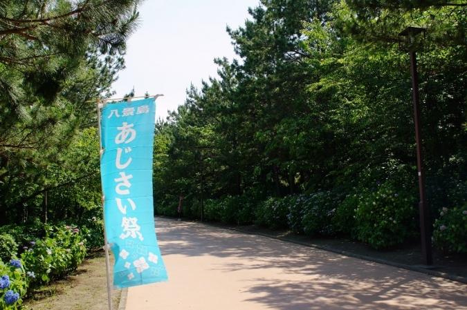 DSC00345八景島