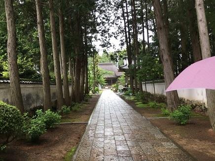 5092017 29番国分寺参道S5