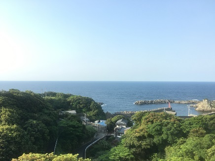 5112017 朝ホテル部屋ViewS1