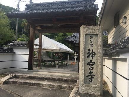 6232017 神宮寺S1