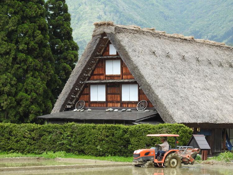 白川郷の田んぼに囲まれた静かな時間をお過ごしください ②