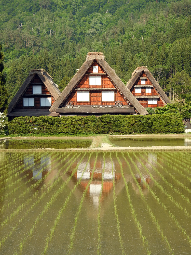 四季を通して、まさに絵画のような景色を楽しませてくれる白川郷 ③