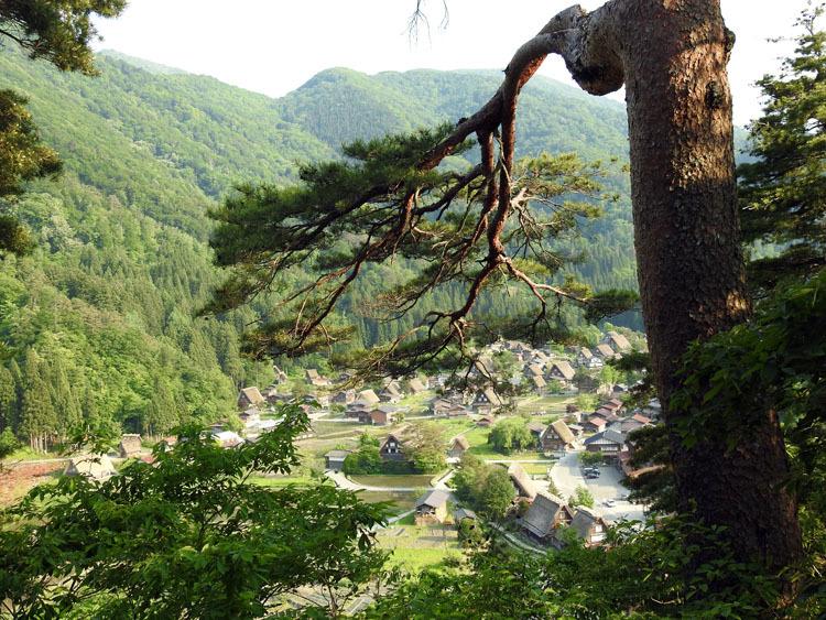 初夏のご旅行は世界遺産 白川郷で 1