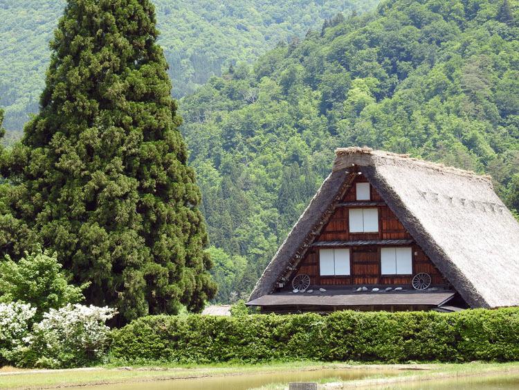 初夏のご旅行は世界遺産 白川郷で 4