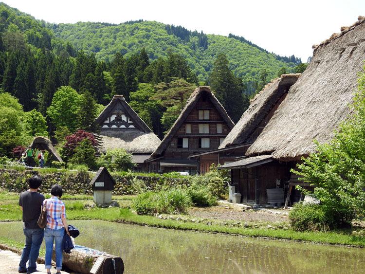 初夏のご旅行は世界遺産 白川郷で 6
