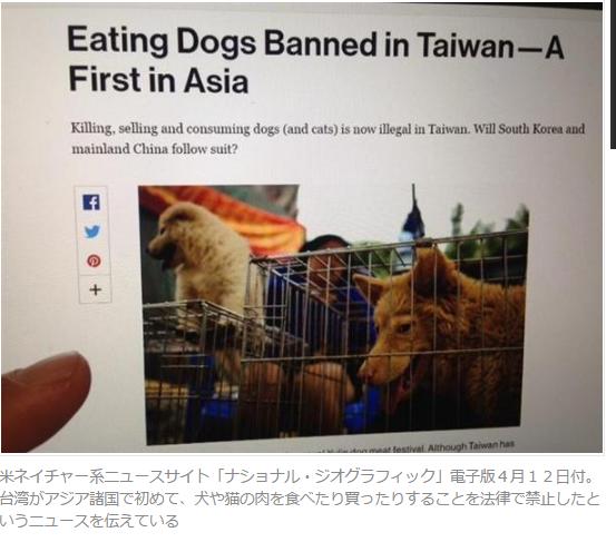 台湾犬食禁止