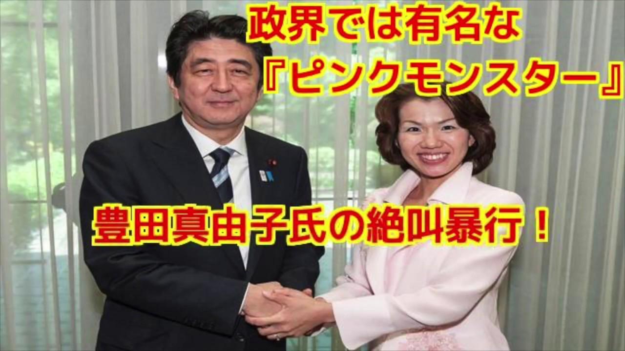 maxresdefault豊田真由子
