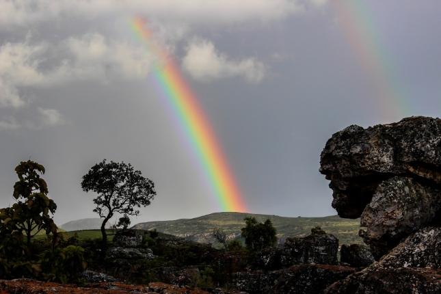 rainbow-509500_1280.jpg