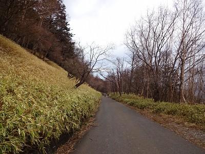 男体山 (219)