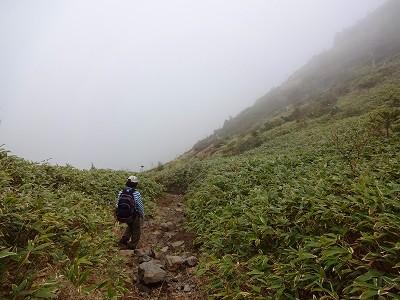 焼岳 (232)