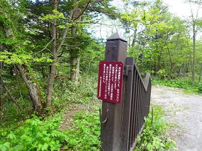 焼岳 (284)