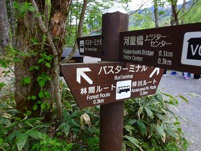 焼岳 (349)