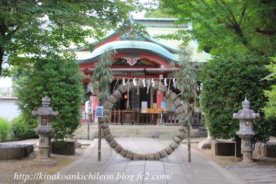 170702 Chinowa kuguri3