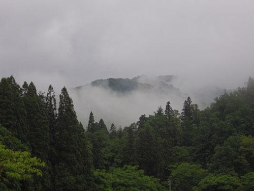 170602 今朝の森林公園1
