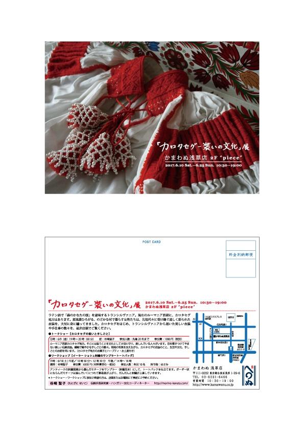 カロタセグDM-JP