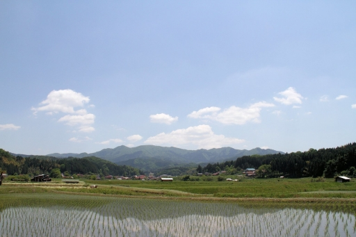 横田から見た船通山