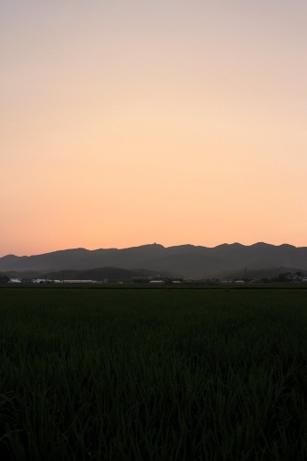 高野寺山の夕焼け