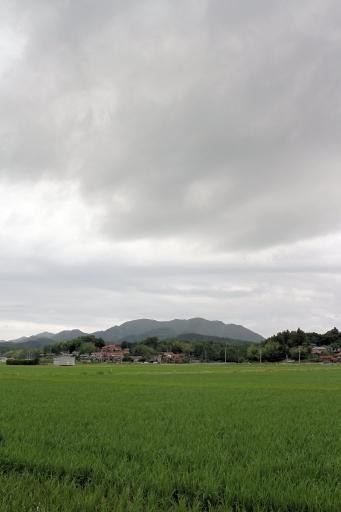 梅雨空の朝日山
