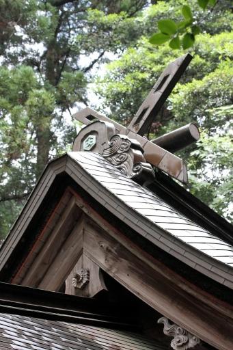 大井神社の御本殿