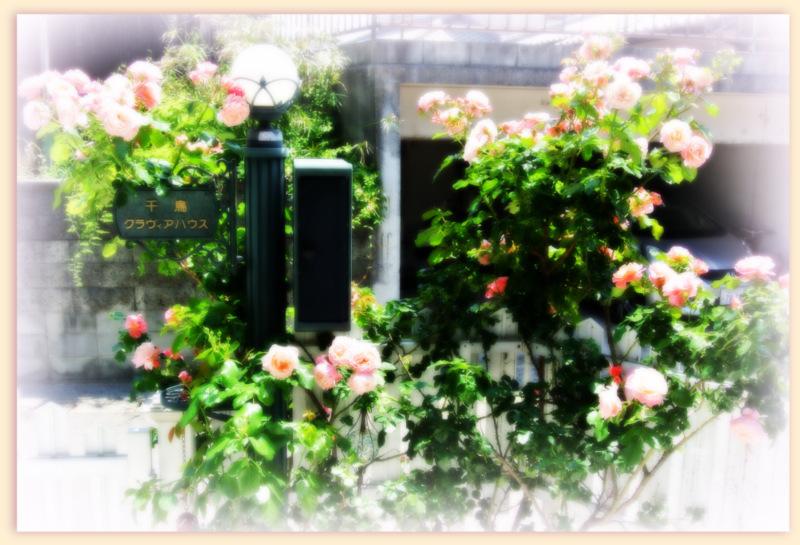 教室の門(千鳥クラヴィアハウス)