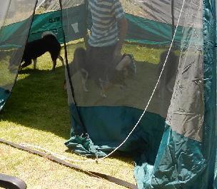 テント3ワン