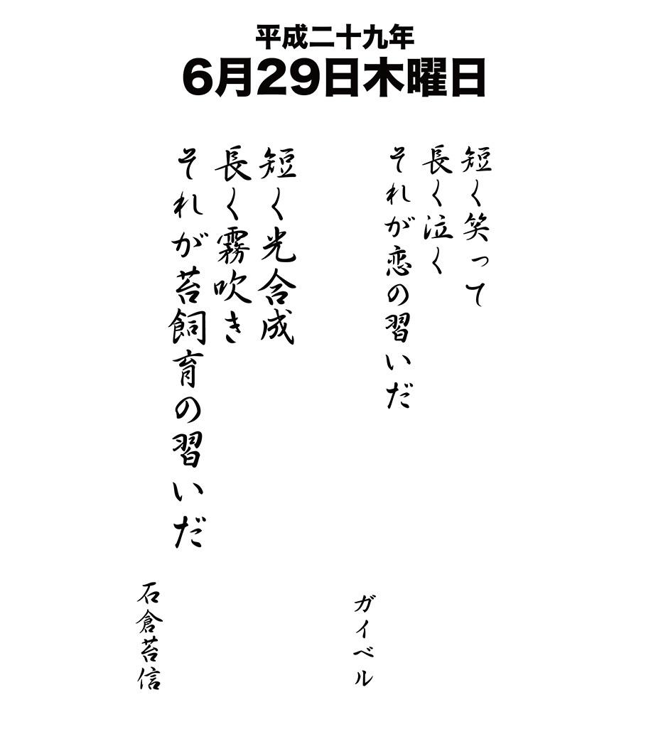 平成29年6月29日