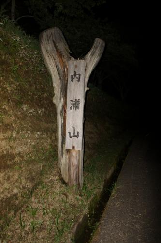 内浦山県民の森