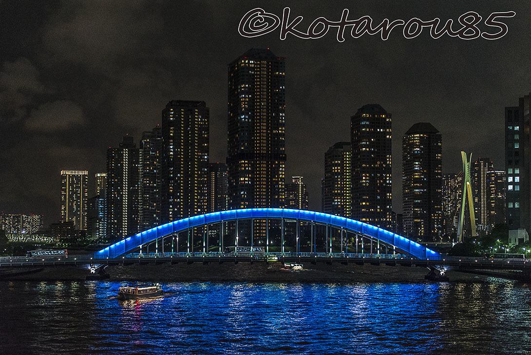 雨の永代橋2 20170525