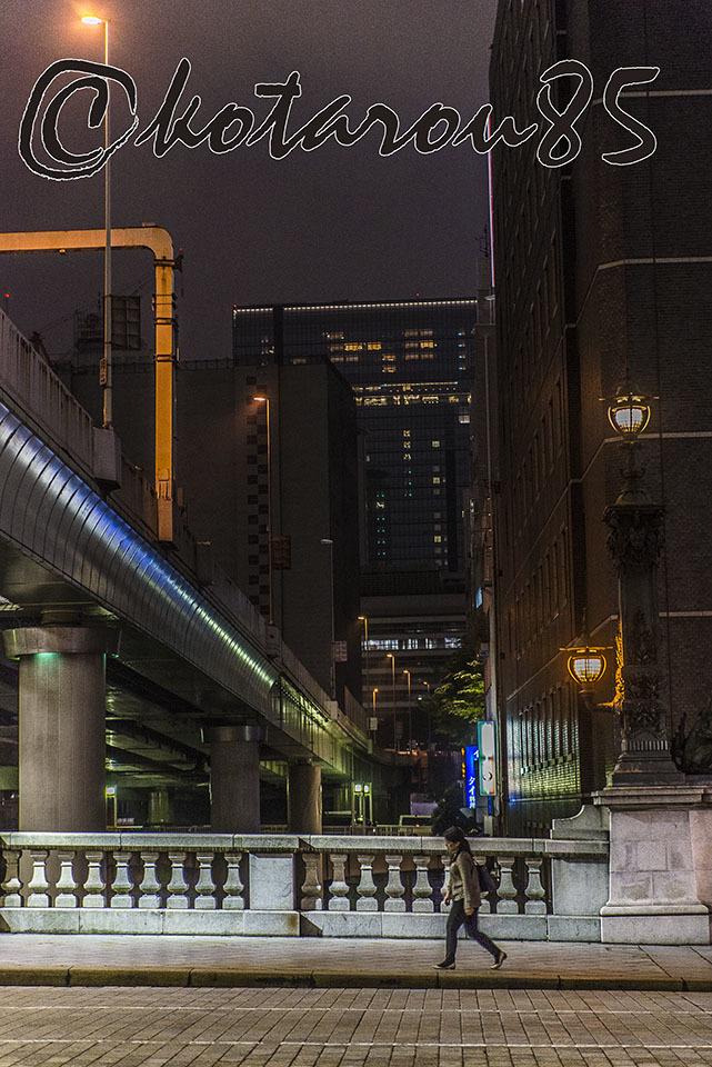 梅雨の日本橋を渡る 20170614