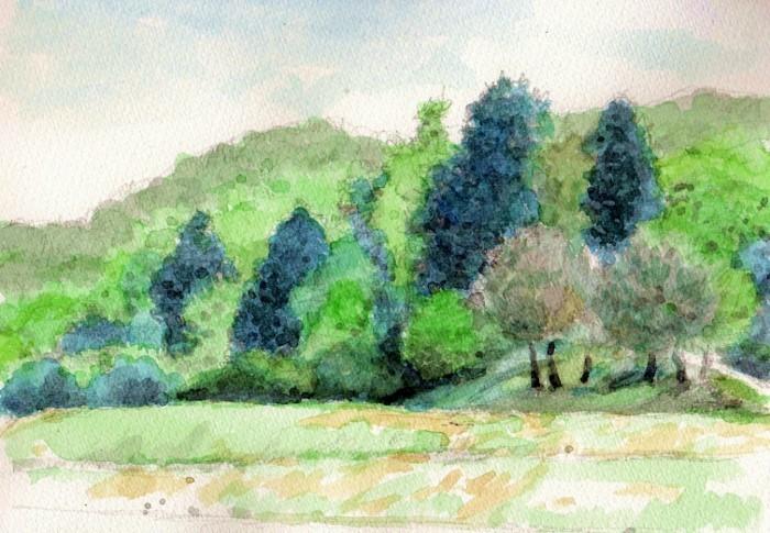 兵庫の里山 (700x485)
