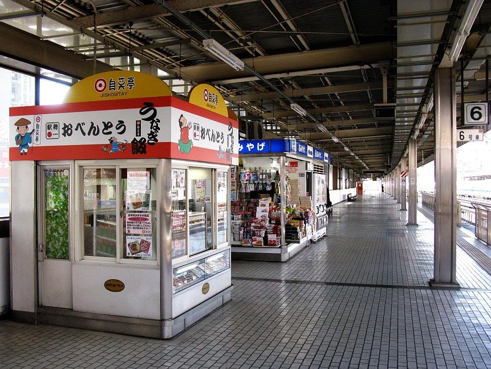 2013_03_06 浜松駅 (5)