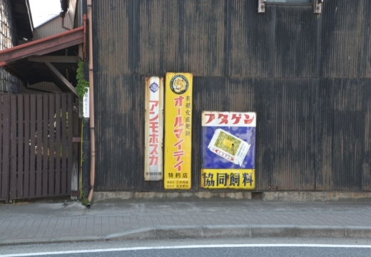 170502-151709-秦野20170502 (250)_R