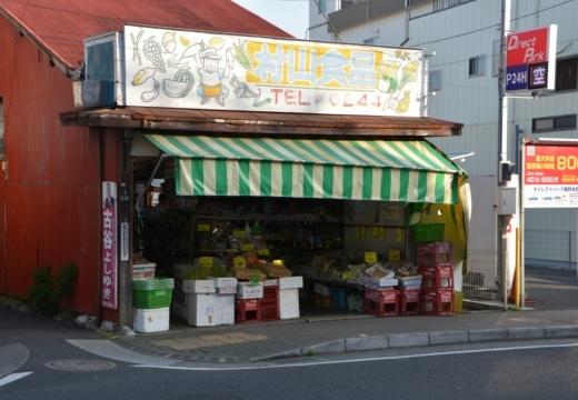 170502-164113-秦野20170502 (430)_R