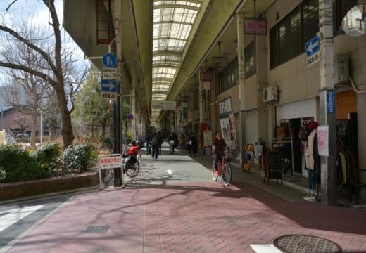 170215-134046-京都20170216 (647)_R
