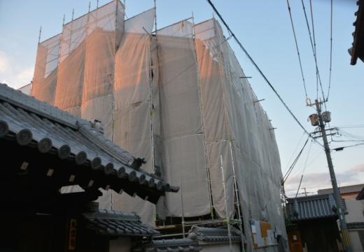 170215-170927-京都20170216 (937)_R