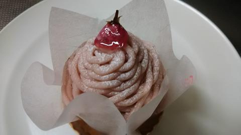 ジュヴァンセル桜モンブラン (1)