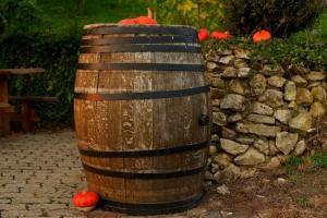 wine-barrel-1772439_1920-1024x683_convert_20170512155240.jpg