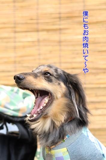 Image_9e7f0de.jpg