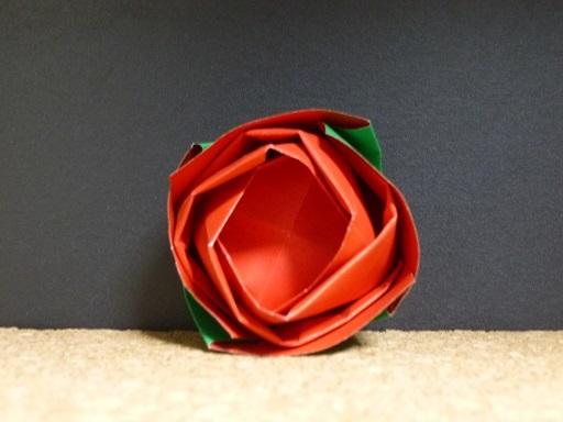 rose_bud_f.jpg