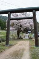 神明神社 (岐阜県飛騨市古川町平岩)