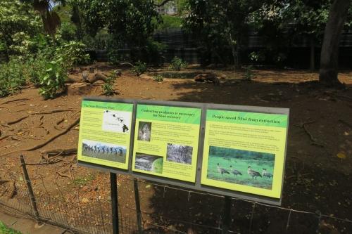 Honolulu Zoo (21)